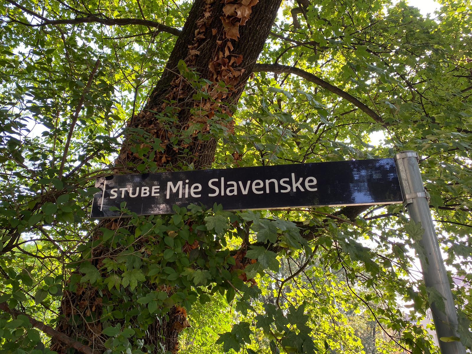 Mia Čorak Slavenska: 'Čista zvijezda na začaranom nebu plesa'