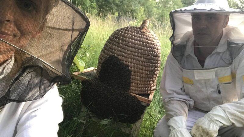 S koljena na koljeno: Obitelj Antolčić bavi se pčelarstvom više od 83 godine