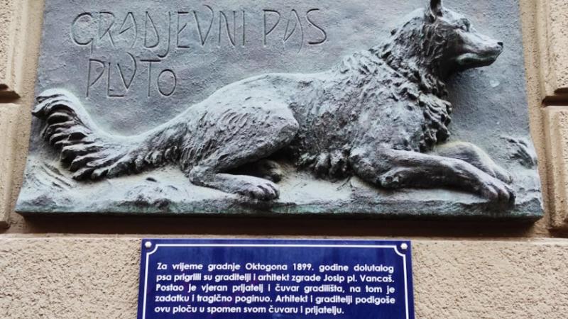 Dirljiva priča o Plutu: Četveronožni zagrebački heroj koji je spašavajući gradilište tragično poginuo