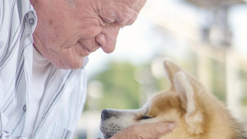 Ibrica Jusić u ovim ludim vremenima poručuje 'Danas je stvarno najbolje biti pas'