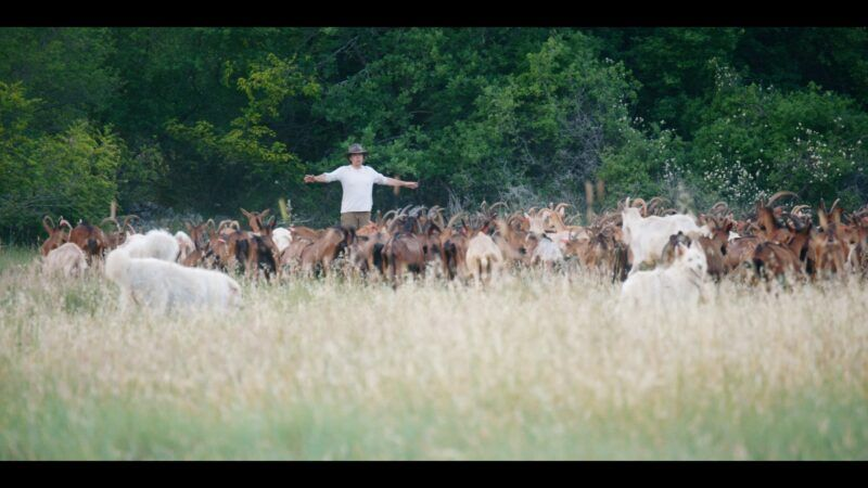 Dulum zemlje: Nova inspirativna serija o ekološkoj poljoprivredi i poljoprivrednicima vizionarima