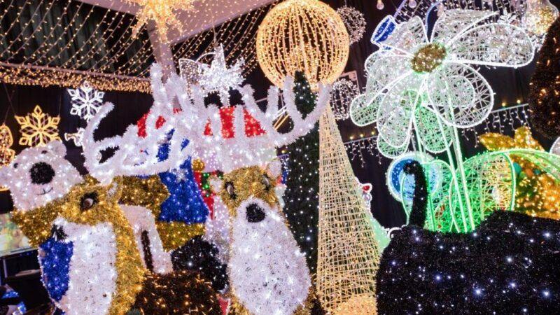 ZG Zoo i Gospodari svjetla: U Samoboru se u subotu može doživjeti božićna čarolija