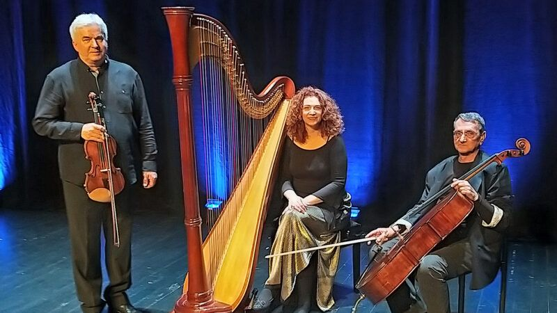 Donatorski koncert za Glazbenu školu Frana Lhotke u Sisku