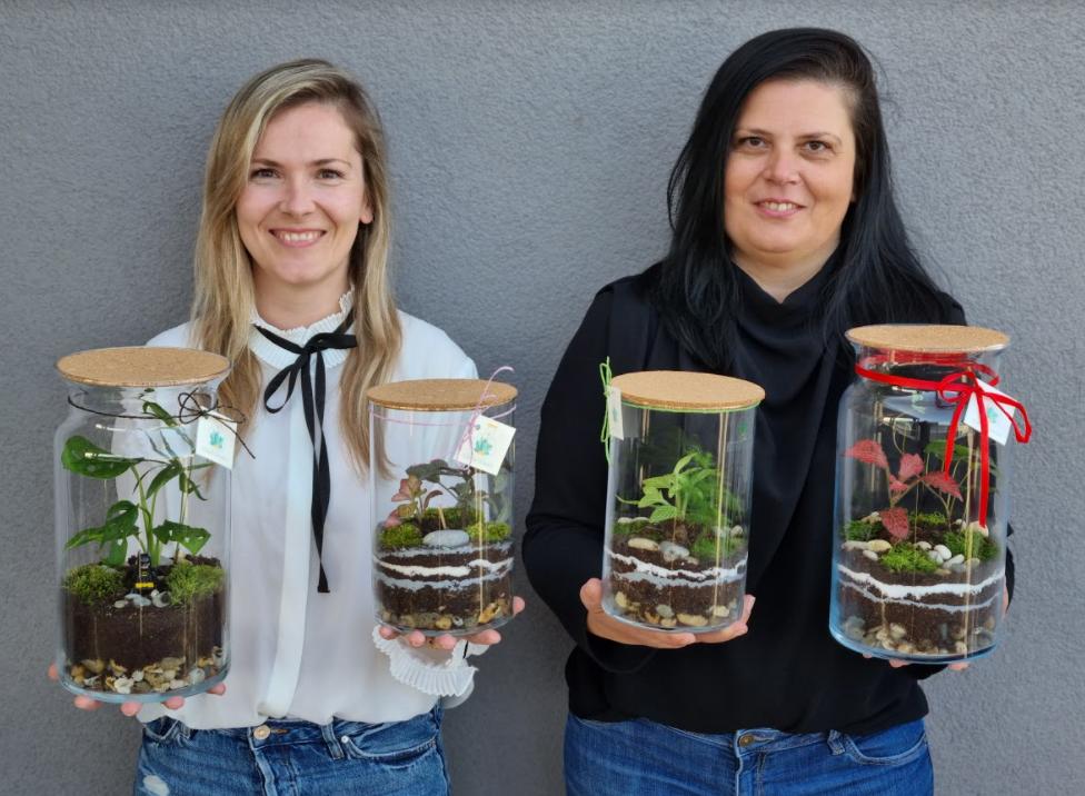 Dvije sestre zaplovile poduzetničkim vodama i odlučile izrađivati unikatne biljne terarije za one kojima biljke često propadaju