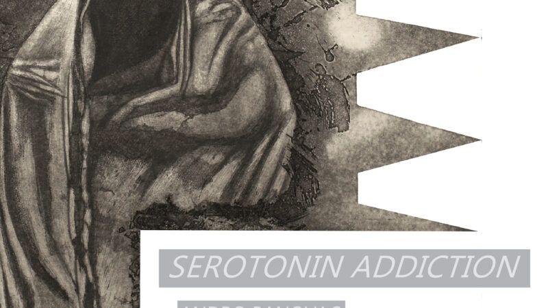 Otvorenje izložbe 'Serotonin addiction' u Galeriji Modulor
